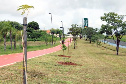 Votuporanga ganha cerca de 75 mil árvores em três anos
