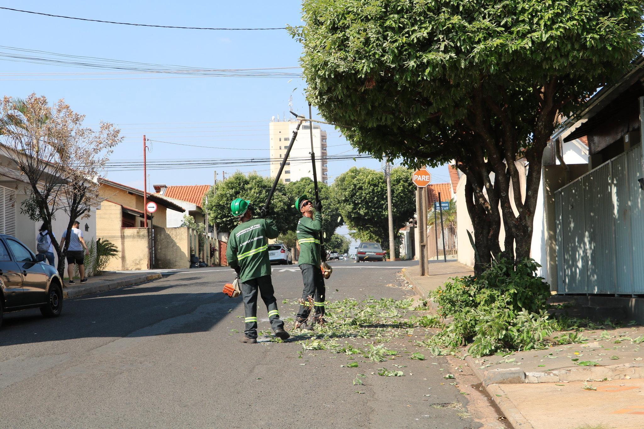Saev Ambiental realiza mais de 70 mil podas gratuitas de árvores em Votuporanga