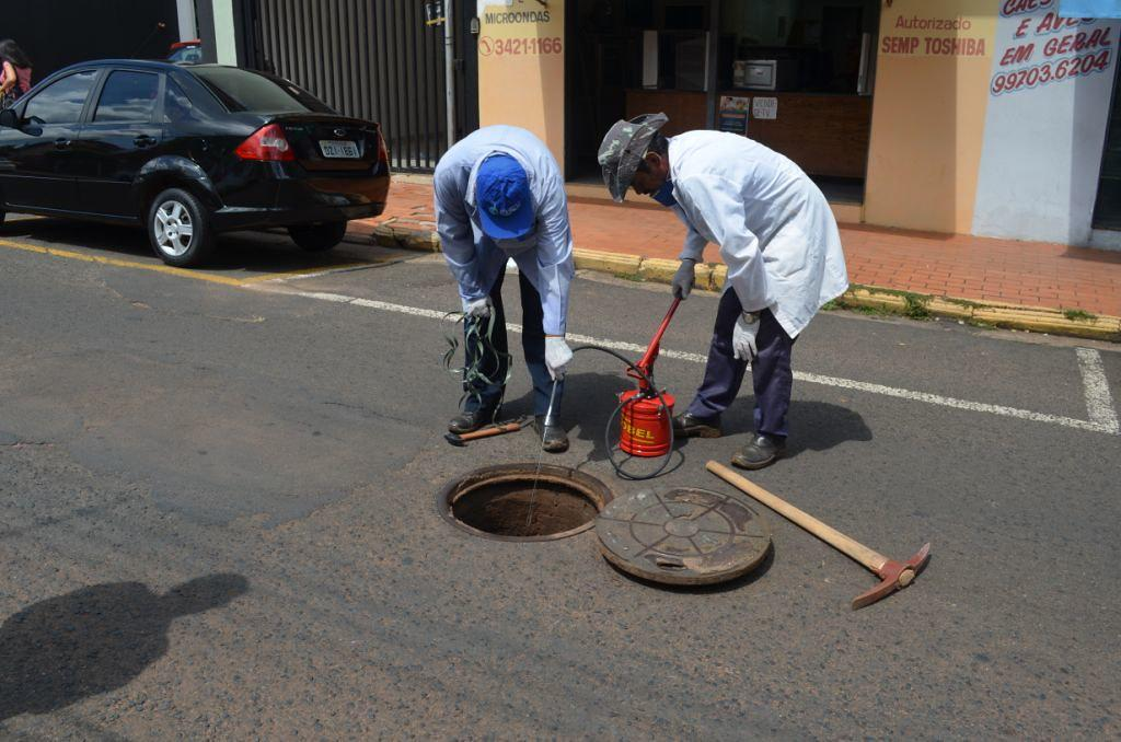 Saev Ambiental realiza controle de pragas no Município